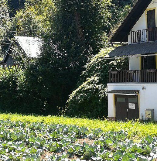 GORNJA TOPLIČICA, kuća, 120 m2