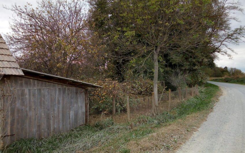 BJELOVAR OKOLICA – Predavac, kuća, 50m2